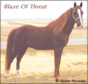 Blaze Of Threat